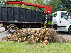 picture of a truck next to a pile of yard waste in amherst, ny
